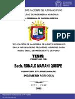 Mamani Quispe Ronald