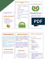 triptico-palta-121113185157-phpapp02.pdf
