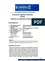 4. SILABO Topicos en Ingenieria Industrial 2019-I