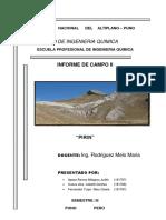 COMPONENTE CURRICULAR Contaminacion Ambiental Salida de Campo PIRIN