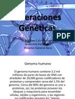 Bases Genética