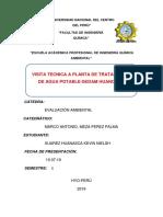 Visita Tecnica Vilcacoto- Trabajo Final