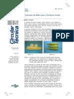 cruz 2002.pdf