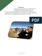 informe-bahia-del-lago-titicaca-puno-convertido.pdf