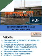 Comite JUNIO 2019.pdf