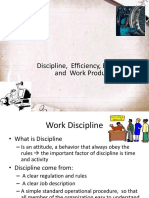 Discipline Efficiency Effectivity and Work Productivity