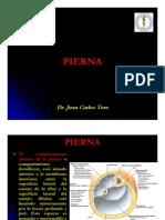 Pierna[1]