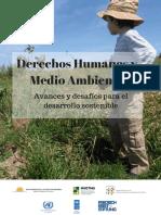 Derechos humanos y medio ambiente 2017