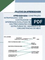 ESQUEMA EVOLUTIVO DA APRENDIZAGEM.ppt