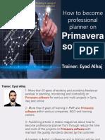 Professional Planner on Primavera