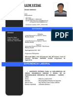 Edgar Huayaney-curriculum Formal