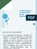 El Ser Humano y La Realización de Sus Necesidades