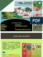 183341423-Buenas-Practicas-Agricolas-en-Esparrago.pdf