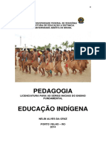 Educação indigena