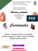 1552458540621_cardiopatia en El Embarazo
