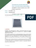 INFORME NÚMERO 001 - DE LA VISITA TECNICA CHIJISIA (SANDIA)