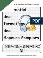 IMP_1.pdf