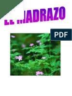 Carlos montañez 11-02
