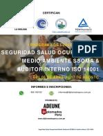 I-Seguridad-Salud-Ocupacional-Medio-Ambiente-SSOMA-Auditor-Interno-ISO-14001-Inicio-06-04-2019.pdf