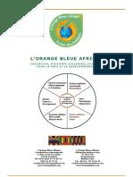 Document OB Afrique Octobre 2010