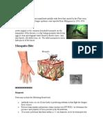 Dengue Fever Health Teaching
