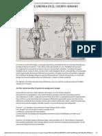 LOS PUNTOS DE ENERGIA EN EL CUERPO HUMANO _ Evolución consciente.pdf