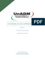 BFPA_U1_EA_JOCH.docx
