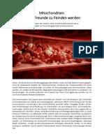 Mitochondrien - Wenn Freunde zu Feinden werden.pdf