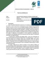 TDR Asesoría Económica Ambiental y de Políticas de Biodiversidad
