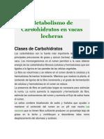 Metabolismo de Carbohidratos en Vacas Lecheras