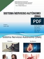Sistema Nervioso Autónomo (SNA)