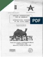 Morrocco Conf Camel