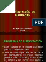 ALIMENTACION DE REPRODUCTORAS.ppt