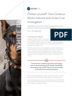 Cerberus White Paper Seg Agnostic May2016
