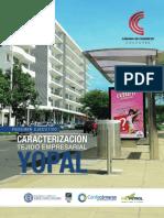 Caracterizacion tejido empresarial Yopal