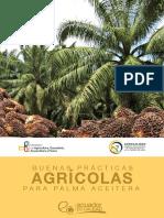 guia-bpa-palma-aceitera-21-12-2016.pdf