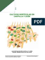 Fichas_hortalizas.pdf