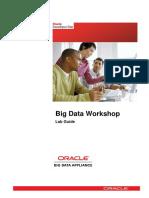 262538065-Big-Data-Workshop.pdf