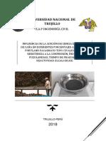 Adicion de Cbca en El Cemento. Proyecto Final (1)