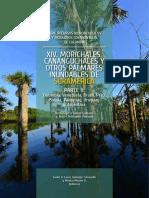 Morichales, cananguchales y otros palmares inundables de Sudamérica Parte 2