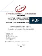 Monografia de Peritaje Contable