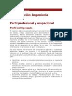 Perfil Profesional y Ocupacional Ingeniero Electricista U. D.