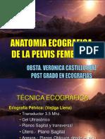 3. Anatomia Ecografica de La Pelvis Femenina