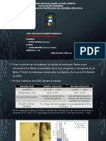 INCLUSIONES FLUIDAS.pptx