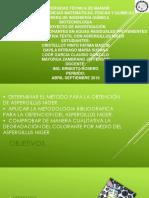 Diapositivas de Biotecnologia-Tratamientos con el aspergillus nigger