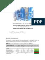 4. Informe Preliminar APR Putre.pdf
