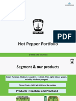 May 2019 Hy Chilli Portfolio