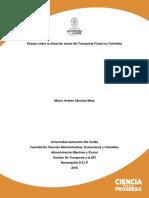 Ensayo Sobre La Situación Actual Del Transporte Fluvial en Colombia