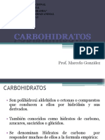 Carbohidratos Bio 1 (2)