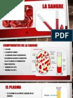 la sangre ysua componentes.pptx
